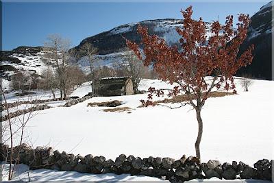 Estampa invernal en las Cabañas de Valnera