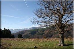 Vista de Balerdi/Mallozarra desde la loma