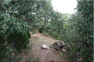 Alto de San Andrés