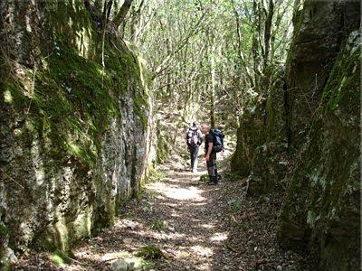 Camino abierto para la mina