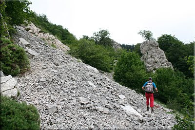 Incomoda pedrera en la ladera oeste de Albeiz