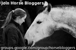 Join me on Horsebloggers :o)