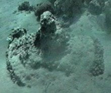 Chars de pharaon retrouvés dans la mer rouge WheelHub2
