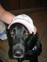 Close up of Cessna wearing a white baseball cap.