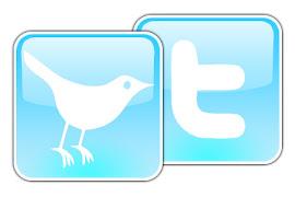 Siga-me no Twitter, onde sempre divulgo informações missionárias