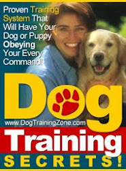"""A Step-By-Step Proven Training System That Will Have Your Dog Or Puppy Obeying Your Every Command"""