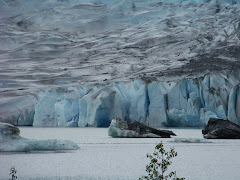 Picture of Mendenhall Glacier in Juneau, AK