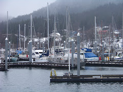 Boats in Juneau