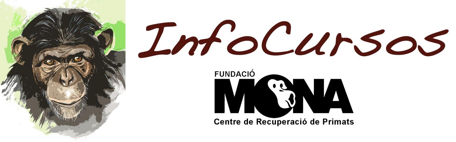 Info Cursos Mona