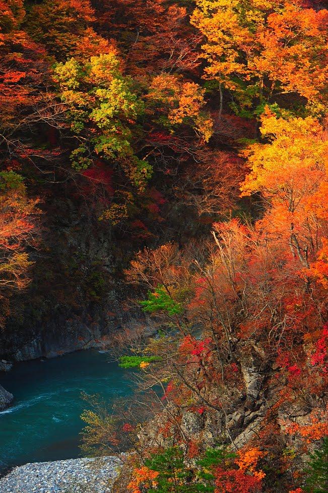 [日光鬼怒川方面の旅5台500キロDSC_5061.jpg]