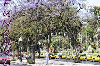 Voorjaar Funchal