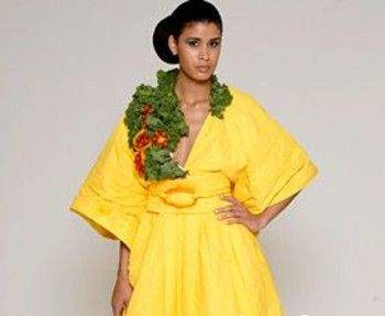 vegetable fabric fashion clothes