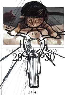 25 Komik kedi Graffitti