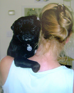Pug Rescue of Northwes Arkansas