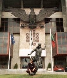 """A Estátua do """"Rei Pantera Negra"""""""