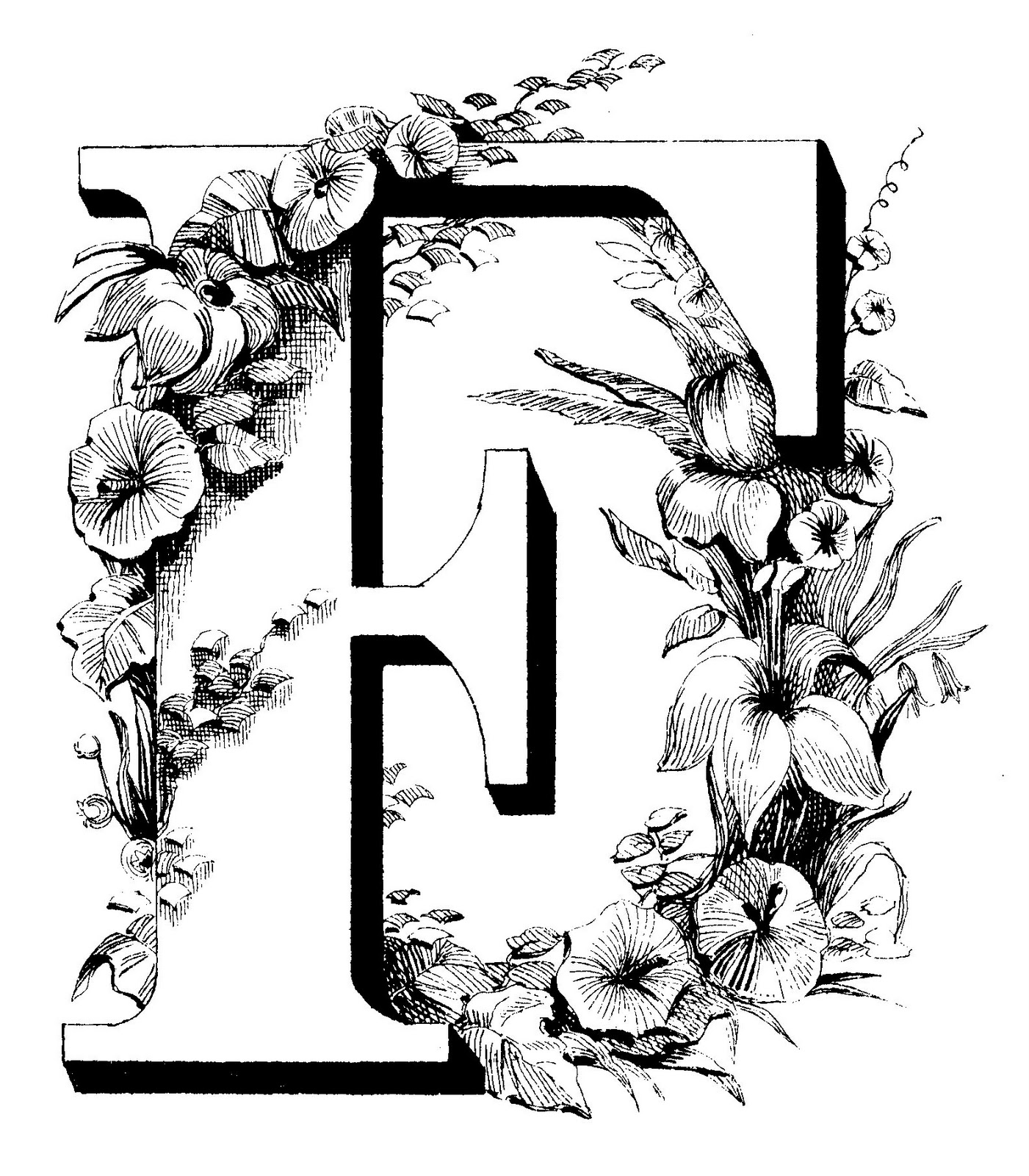Cool Letter F Designs THE SOMNAMBULIST A-Z