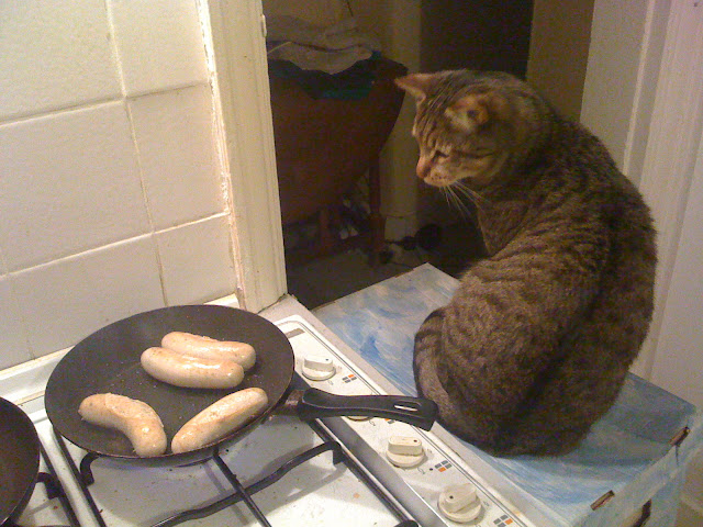 Chef cat is watching the sausages by ruudb0y from flickr (CC-NC-SA)