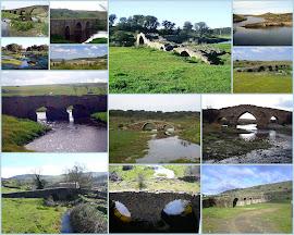 Los puentes de la comarca