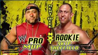 Quienes estan en NXT?¿ PRO4