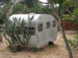 Cactus-laden trailer