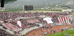 Τελικός Κυπέλλου Ελλάδας 2007