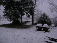 Snowy Morning in Arkansas, Dec 09