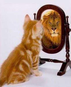 Chat ou lion ?