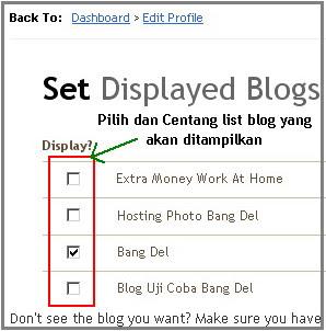 set_displayed_blogs