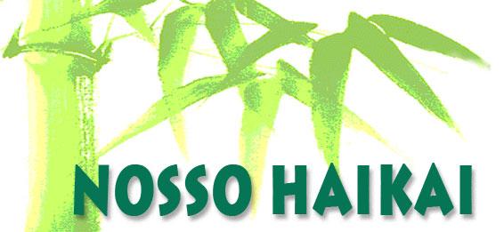 NOSSO HAIKAI  - Revista de Haicai