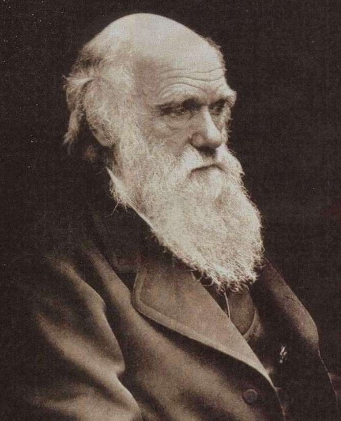 the influence of charles darwin on the world history While darwin was influential in the fields of natural history  as an unpaid naturalist on a scientific expedition around the world &#9now charles darwin was.
