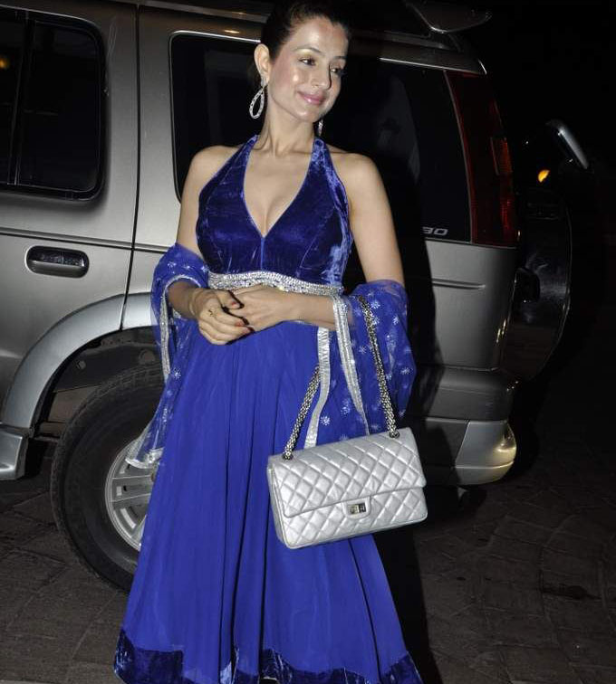 Amisha Patel At Laila Khan Wedding Reception