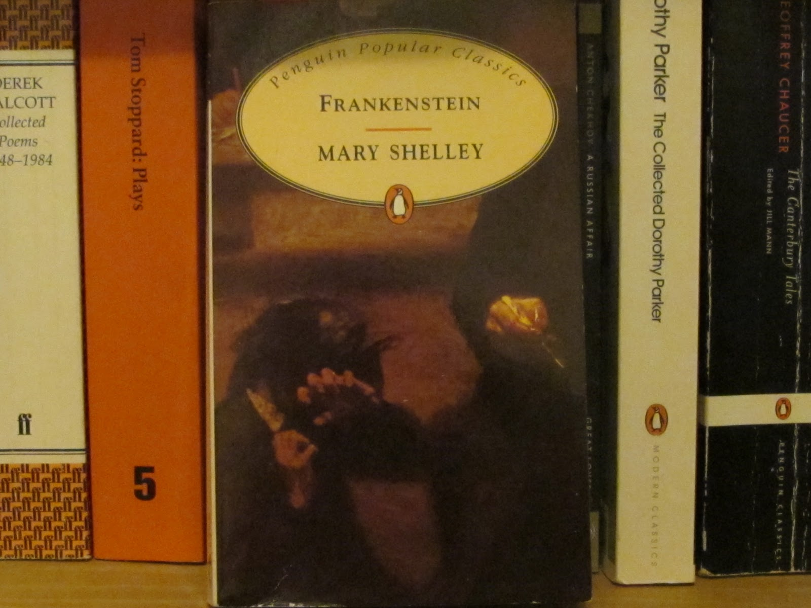 imagination vs obsession in mary shelley's 8 books that wouldn't exist without mary shelley's 'frankenstein' on the book's 200th anniversary, michael sims, author of 'frankenstein dreams,' collects frankenstein's hideous progeny.