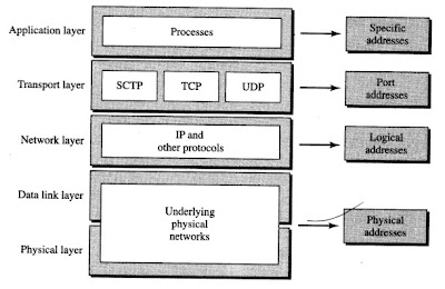 Relationship of layers and addresses in TCP/IP network model
