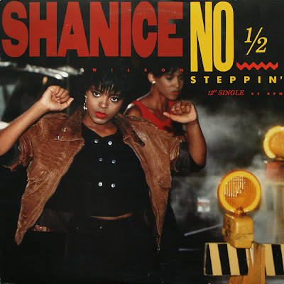 Rare and obscure music shanice for 1988 music charts
