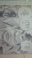 One Piece 556 Spoiler Image