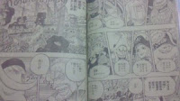 One Piece 559 Pics