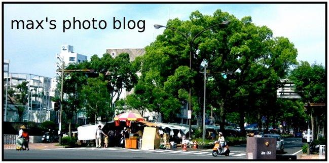max's photo blog