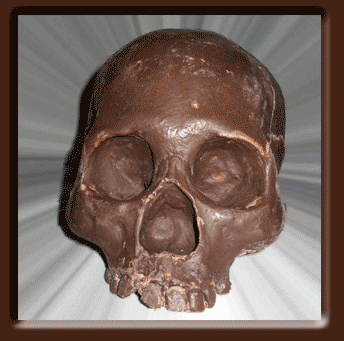 Crânios de Chocolate