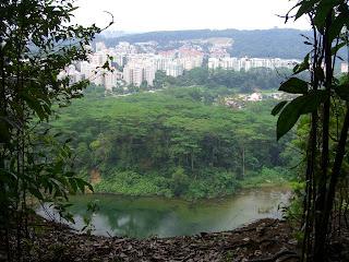 Bukit Timah Natural Reserve