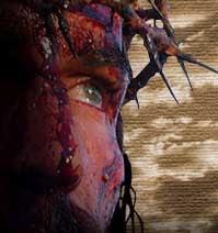 http://4.bp.blogspot.com/_ImmpYmMSpBU/Sa2Ca8VNoSI/AAAAAAAAAXA/hTgMIlwHV1g/s400/sangre.jpg