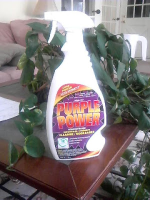 Clean Rite Purple Power degreaser