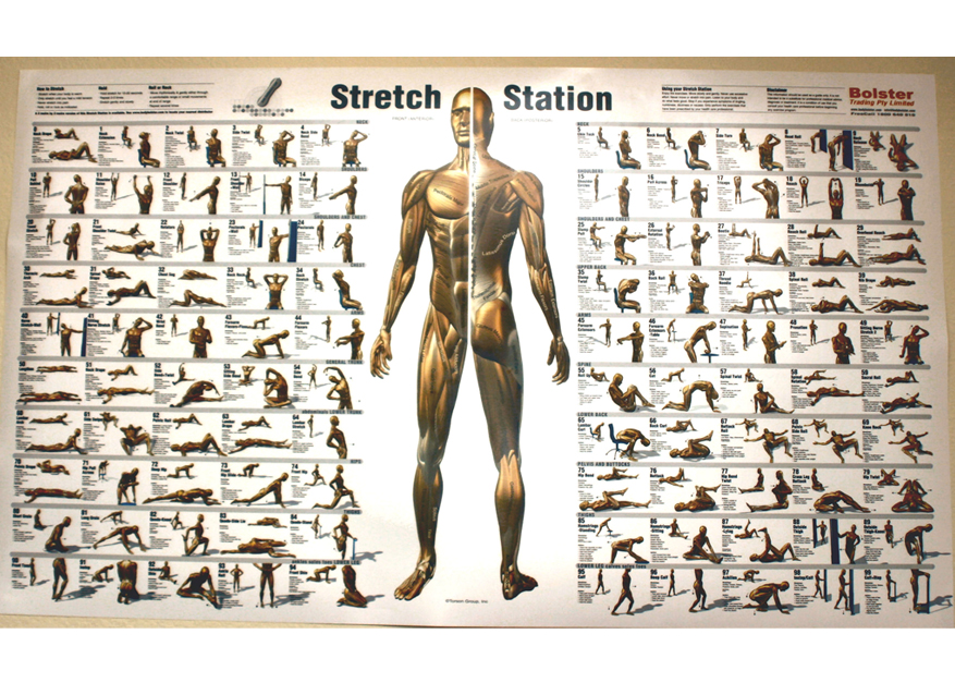 "Search Results for ""Free Exercise Body Charts"" – Calendar 2015"