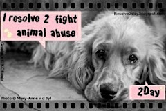 Resolve to fight animal abuse today