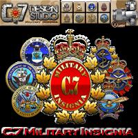 C.7 Military Insignia