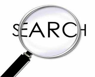 Caixa de busca. Você usa em seu blog?