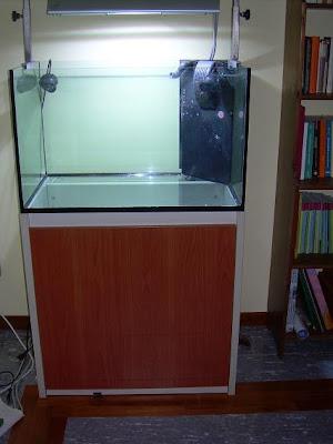 Acqua verde elos system 80 for Acquario per tartarughe usato
