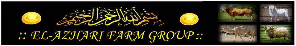 El-Azhari Farm Group