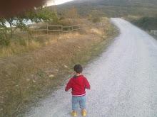 Paseando por Lozoya