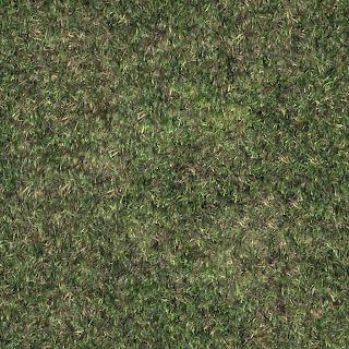tileable texture grass