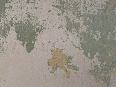 texture plaster wall painted